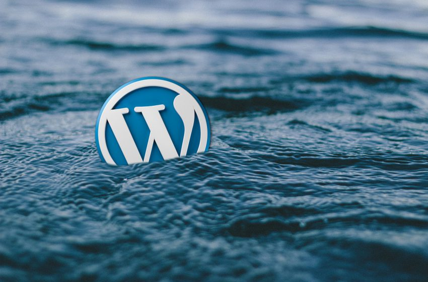 How to Check Which theme a WordPress Site is Using